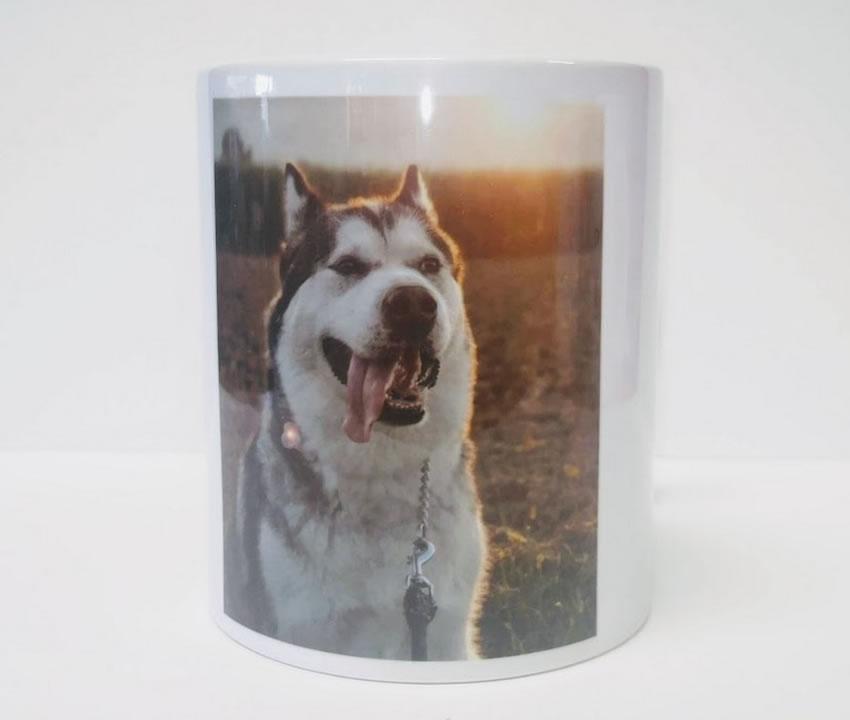 Skodelica - hišni ljubljenčki - Pes